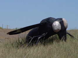 Trip-2003-07-15-MT-Unknown-Sculpture-hill-fly-200